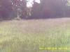 Screenshot from MOVI0046.avi - 3