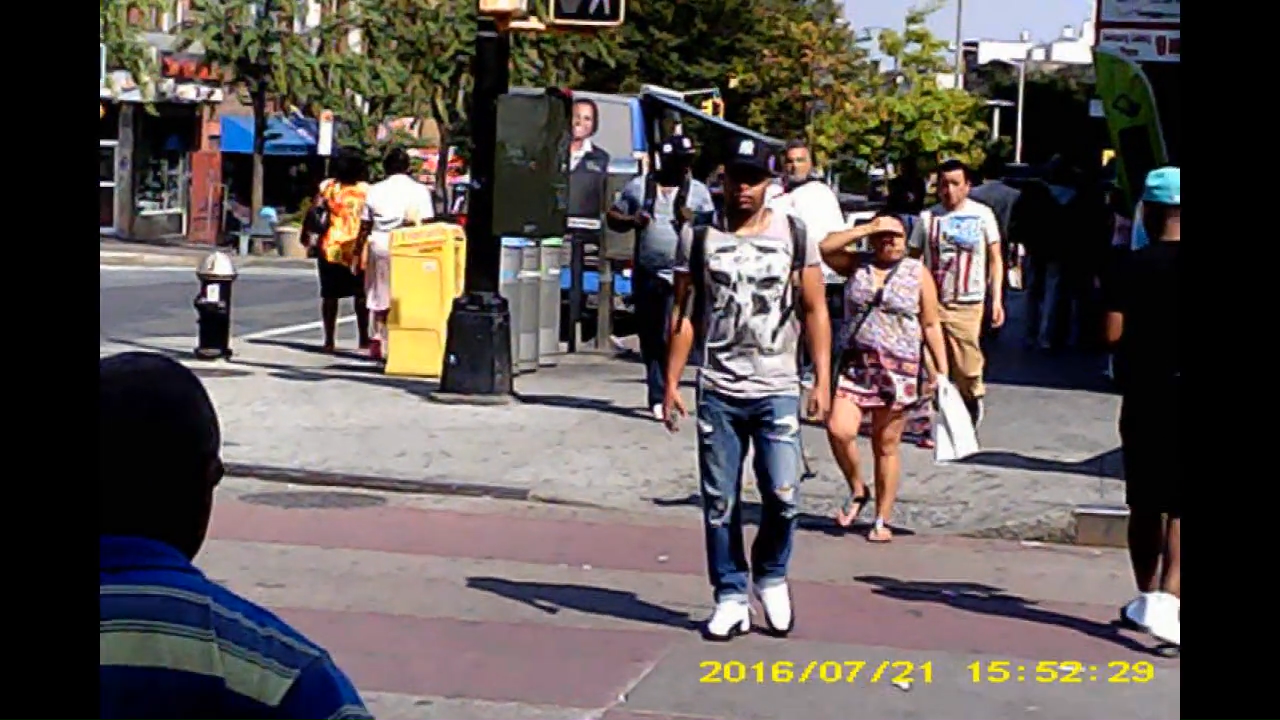 gang stalking, electronic harassment, cointelpro, bronx, nyc